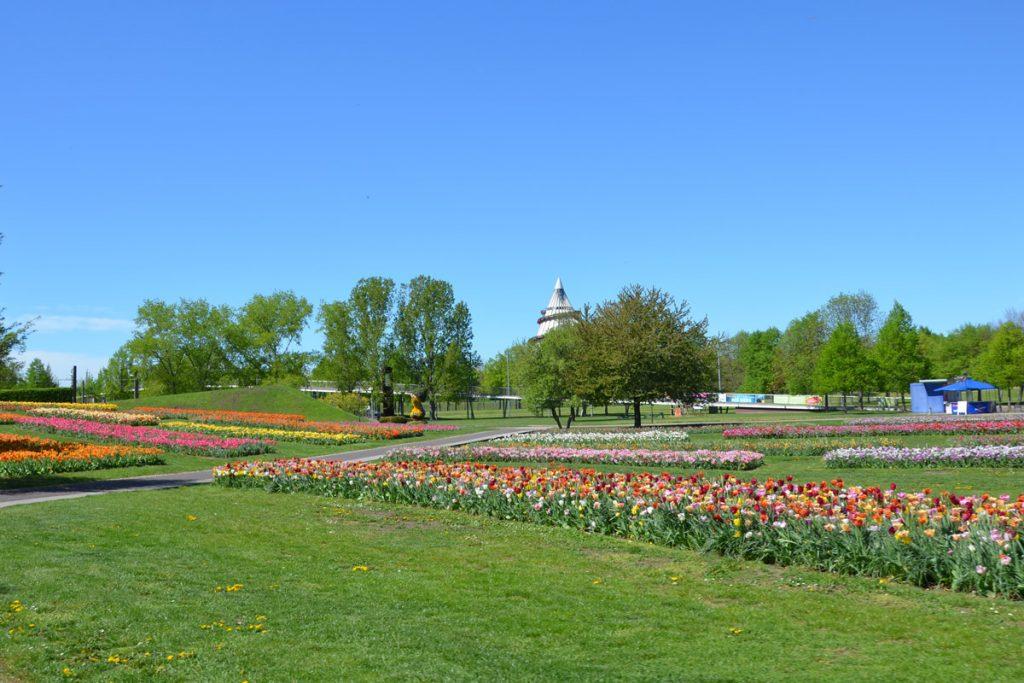 Magdeburg Elbauenpark